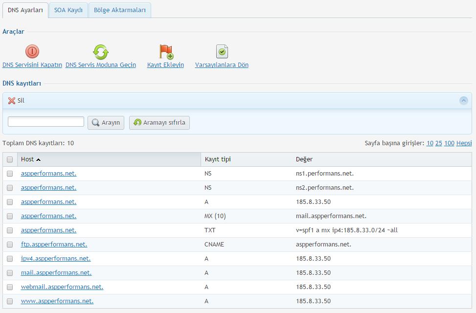 Plesk Panel DNS Ayarları