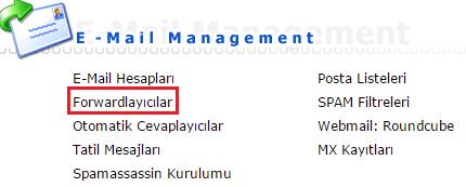 direct-admin-email-yonlendirme-1