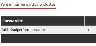 direct-admin-email-yonlendirme-2