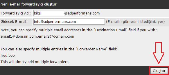 direct-admin-email-yonlendirme-3